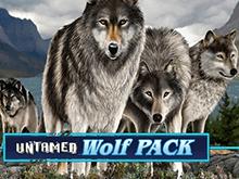 Играть бесплатно в игровой автомат Untamed Wolf Pack